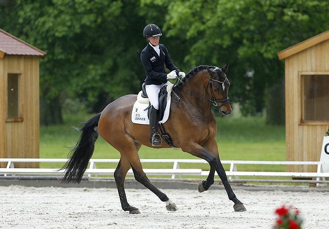Pferdefestival in Redefin