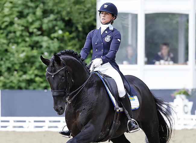 """Pferdewechsel auf """"skandinavisch"""" – Finale für Deutsches Dressur-Derby steht"""