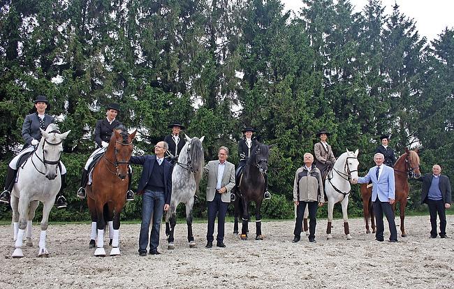 Barockpferde beim CHIO Show- und Zuchttag 2014