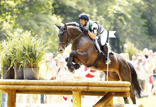 Michael Jung siegte im Wiesbadener Schlosspark