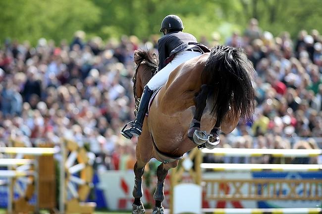 Pferd International in München: Auf dem Weg zum Zuschauerrekord