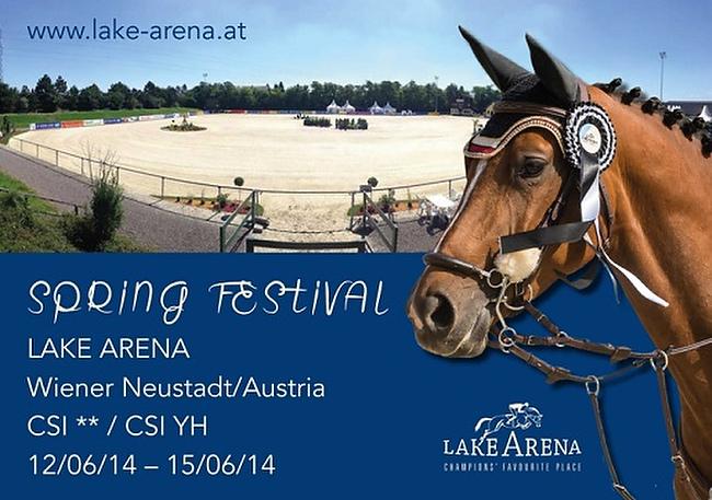 Lake Arena Spring Festival 2014