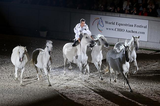 CHIO Aachen 2014: Pferd und Sinfonie