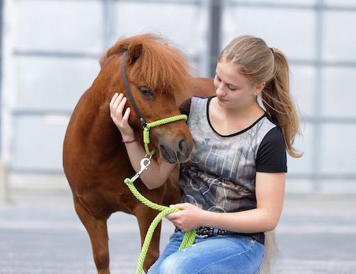 Baltic Horse Show mit Facebook Stars 2015 - Reitsport-Nachrichten.eu