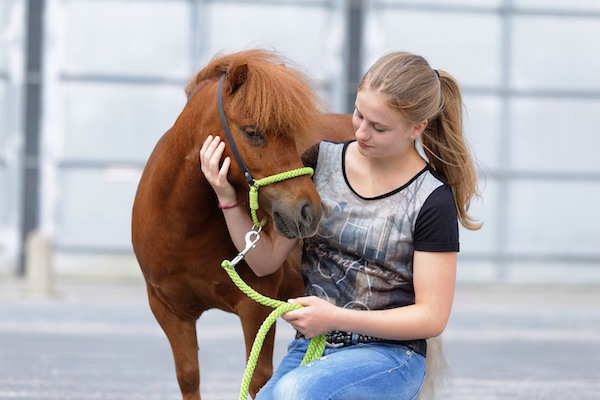 Facebook-Stars Maja und Gijs bei der Baltic Horse Show