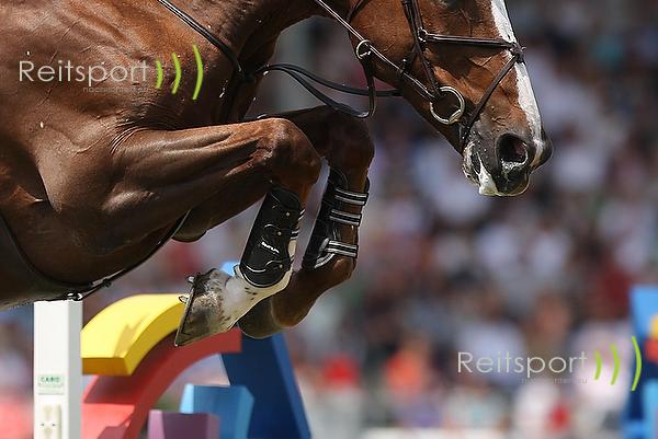 Europameisterschaft Aachen 2015: Nationenpreis Zwischenstand