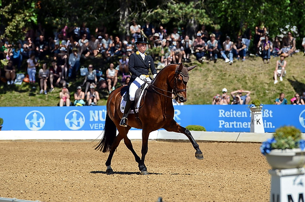 Pferd International in München-Riem: Sieg für Isabell Werth