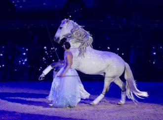 AMADEUS HORSE INDOORS 2018