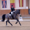 High Class Horse Center: Februar-Turnier mit Top-Besetzung