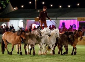 Wiesbadener PferdeNacht feiert 25. Geburtstag