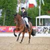Mai-Markt Turnier in Mannheim: Werth erfolgreich