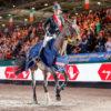 Natalia Stecher gewinnt Selleria Equipe Goldener Sattel