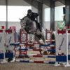 Karlsfeld 2020 – Junge Reiter und junge Pferde im Fokus